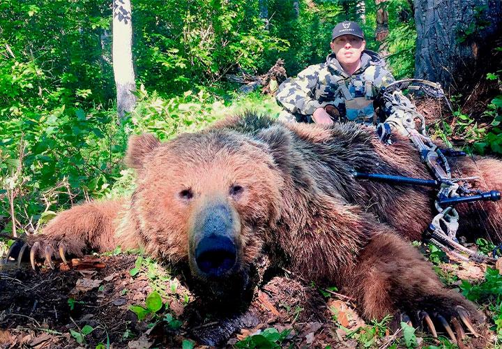 720-spring-brown-bear-junt-alaska-artci-wild-outfitters